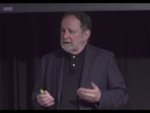 TEDx UFS 2017 - Dr. Sal Morgera: The Grandest Social Network | Sal Morgera | TEDxUSF