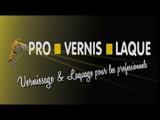 Pro Vernis Laque - Professionnels