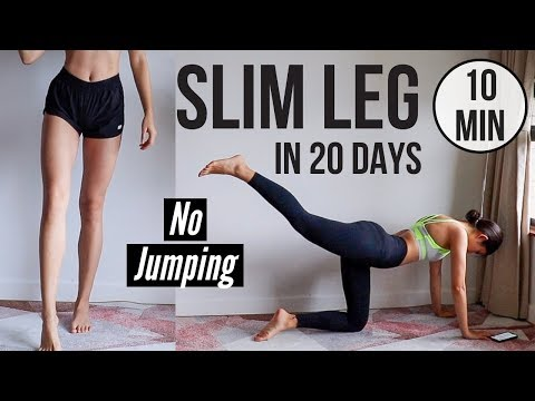 SLIM LEGS IN 20 DAYS! 10 min No Jumping Quiet Home Workout ~ Emi