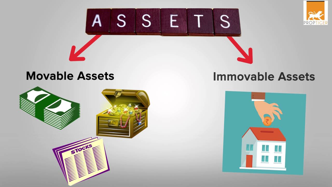 immovable assets