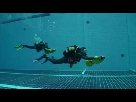 Diveworld Videos | steven storey2 movie