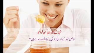 Benefits of Honey for Health 2019 |Shahid k Faidee in urdu 2019 | شہد کے فوائد  2019