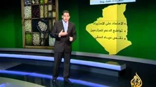 غياب الاكتفاء الذاتي للجزائر في إنتاج الحبوب
