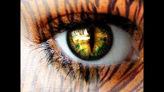 Importance of Tiger eye stone & Other Semi Precious Stone