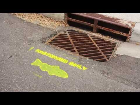 Trout Unlimited Canada Yellow Fish Road - 2014 Emerald Awards Finalist