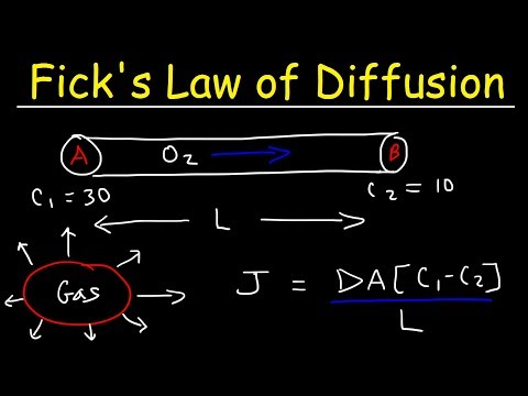 Fick's Law of Diffusion, Concentration Gradient, Physics Problems
