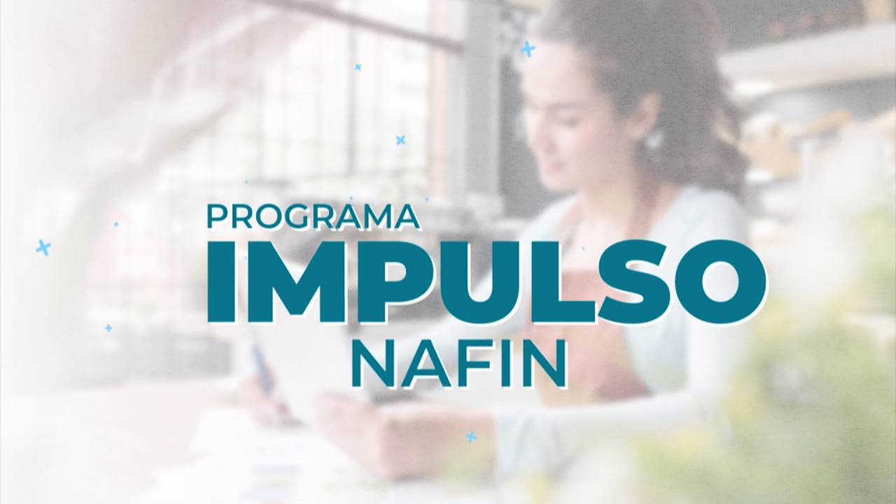 Proyecto Sectorial Impulso NAFIN - YouTube