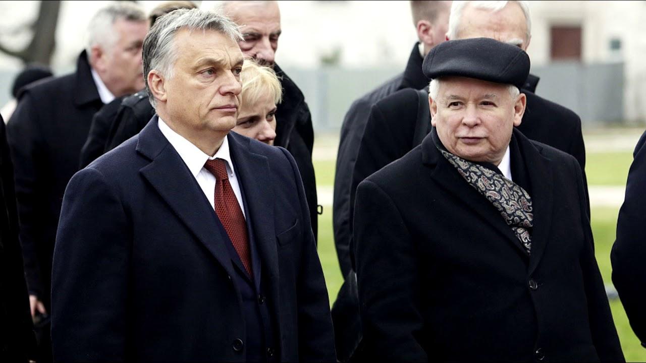 Komunikat Ministerstwa Prawdy nr 690: Czy Orban zdradzi Kaczora-Dyktatora?