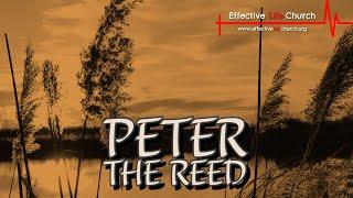 Effective Life Church - Peter The Reed - Pastor Matthew Guest