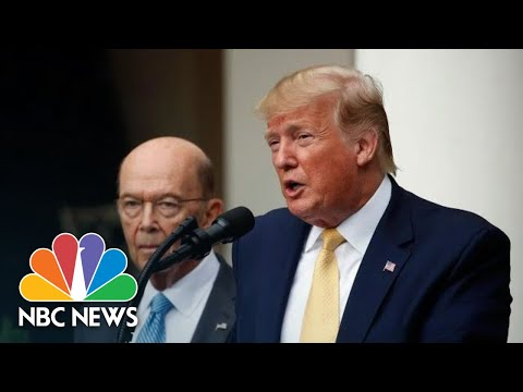 President Donald Trump: 'We Are Not Backing Down' On Determining Citizenship | NBC News