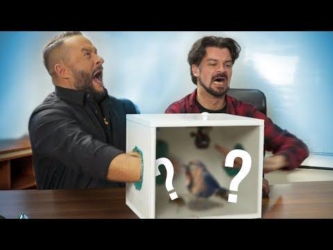 WHAT'S IN THE BOX? #4 IVAN IVANOVIĆ I EKIPA
