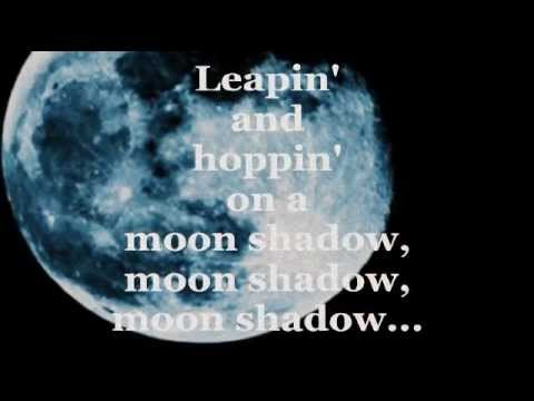 Cat Stevens Moonshadow Mp