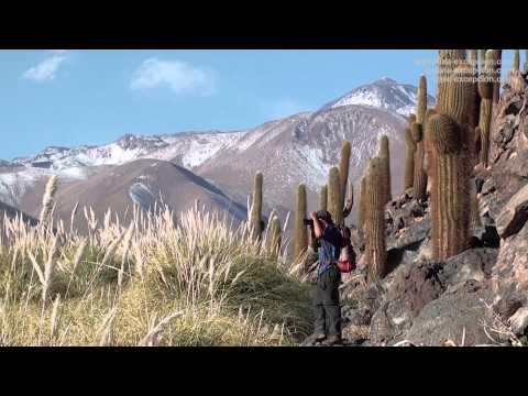 Trekking, randonnée autour de San Pedro de Atacama, Chili