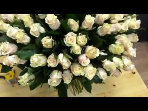 101 кремовая роза (Талея)