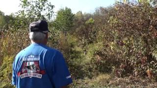 "13"" Females 15th. Trio Akc National Gun Dog Brace Trial Oct. 2010"