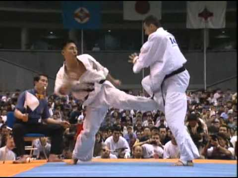 Resultado de imagen de kyokushin low kick ippon