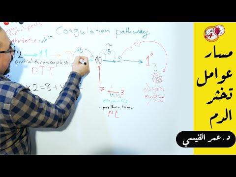 افضل طريقة لفهم وحفظ مسار عوامل تخثر الدم | coagulation factors pathway