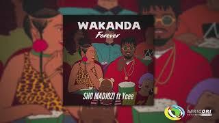 sho-madjozi---wakanda-forever-feat-ycee