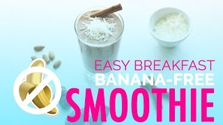 Fat Burning Foods | Easy Breakfast Recipes for Smoothie, NO Bananas