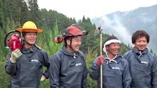 宮崎の魅力を伝えている「日本のひなた宮崎県」プロモーションムービー...