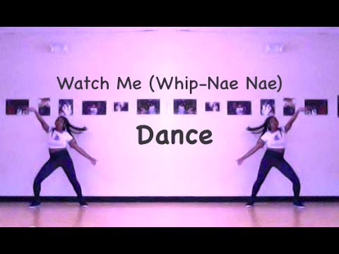 How to Whip and Nae Nae: 11 Steps (with Pictures) - wikiHow