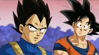 the-story-of-vegeta-s-mother-karin-dragon-ball-advanced