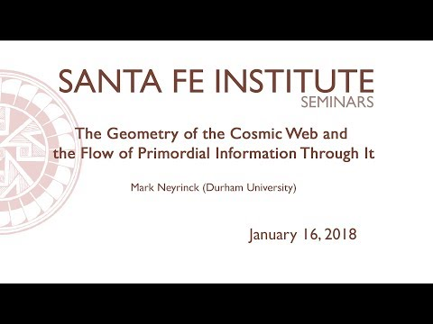 The Geometry of the Cosmic Web and the Flow of Primordial Information Through It
