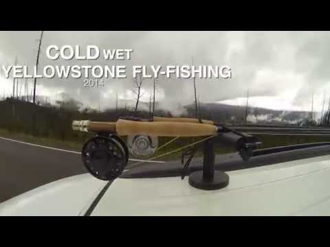 Yellowstone Fly Fishing 2014