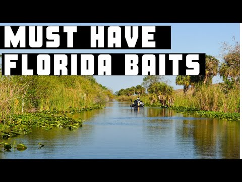 Must Have Florida Baits
