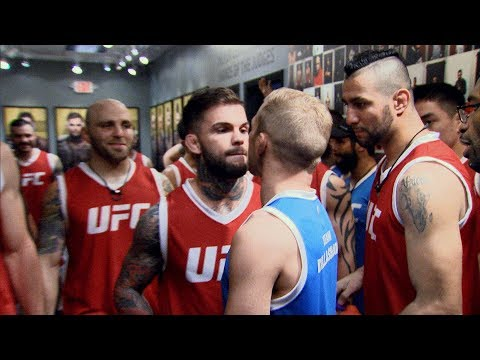 UFC 217: Cody Garbrandt vs TJ Dillashaw - Score to Settle
