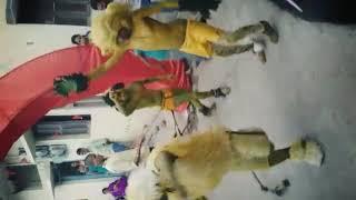 Video Umaria sher dance 2017 download MP3, 3GP, MP4, WEBM, AVI, FLV Oktober 2018