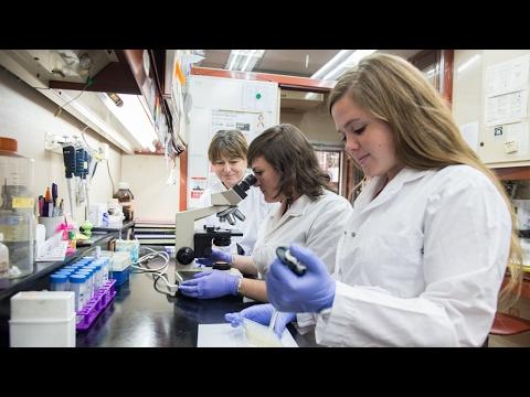 la mayoria de las mutaciones que causan cancer se deben al azar