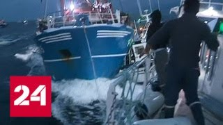 Смотреть видео Французские рыбаки помирились с британскими, 15-летний конфликт завершен - Россия 24 онлайн