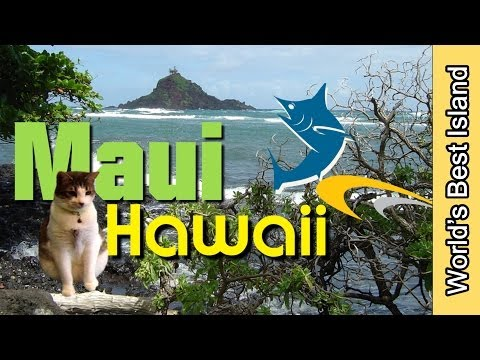 maui-hawaii-best-of-video---enjoy-each-day-in-maui-to-the-max
