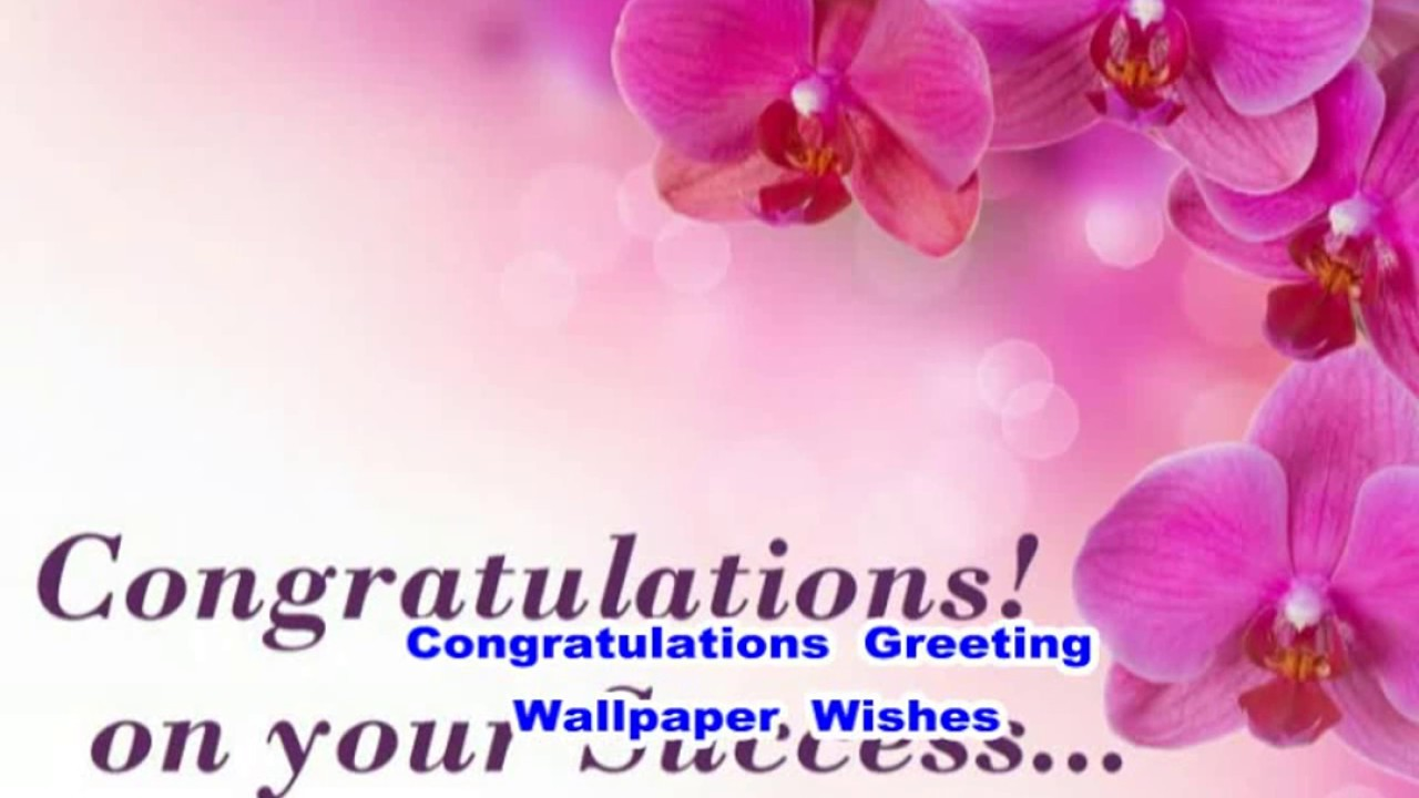 congratulations greeting wishes cards wallpaper images youtube