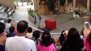 Jungle Island. Birds Show in Miami-Aug.25,2013