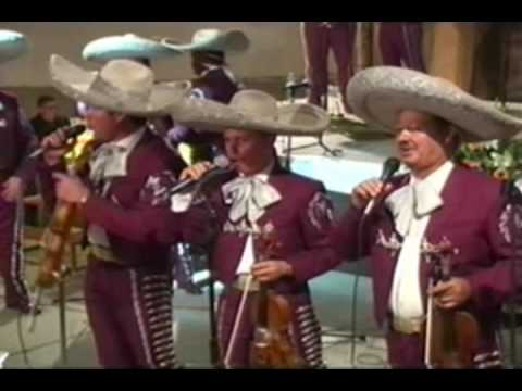 Mariachi Vargas (pop. Rancho Grande)
