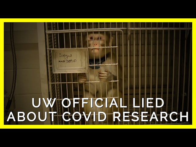 University of Washington Official Lies About Covid Research