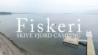 Skive Fjord Camping - Fiskeri