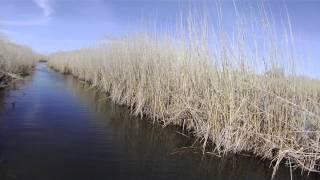 Рыбалка в Астрахани. Видео о ловля окуня на небольшие воблеры
