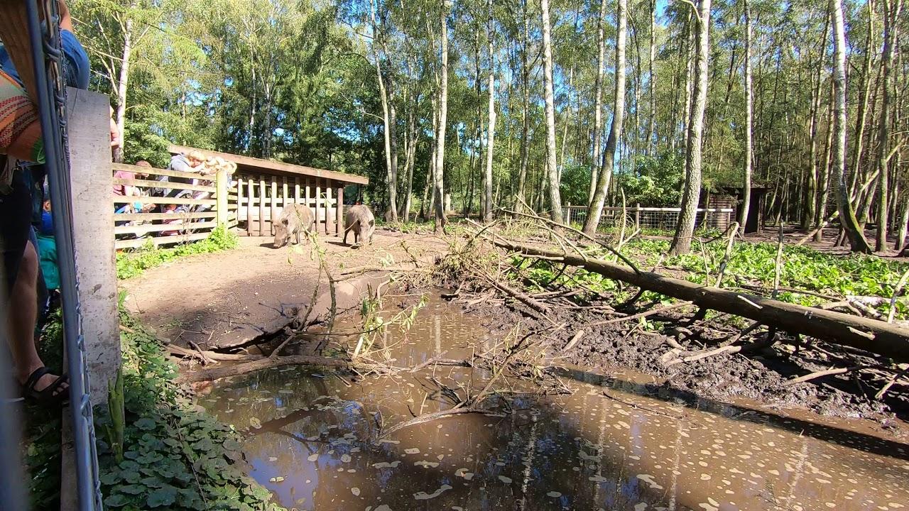 Eekholt Tierpark