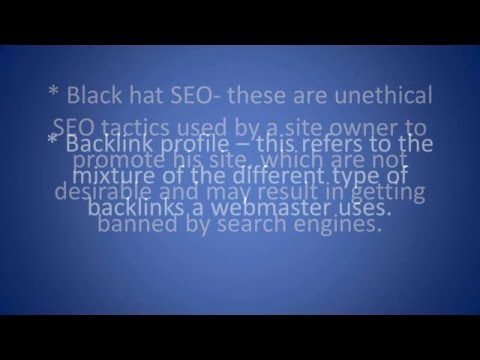 SEO Company Jupiter FL | SEO Terms Defined