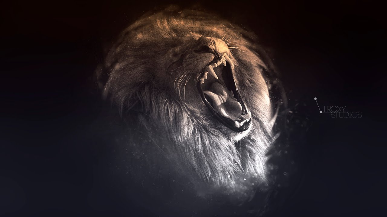Popular Wallpaper Logo Lion - maxresdefault  Pictures_257639.jpg
