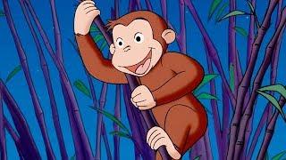 Georges le Petit Singe 🐵Une Soirée Au Zoo 🐵Saison 1 Épisodes Complet 🐵Dessin Animé 🐵Animation