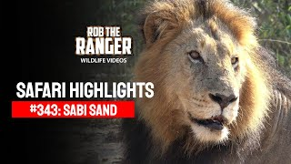 Idube Safari Highlights #343: 13 - 16 May 2015 (Latest Sightings) (4K Video) #youtubeZA