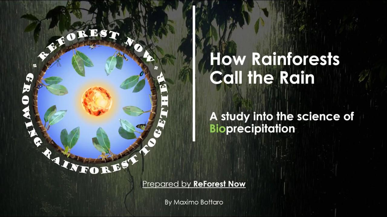 How Rainforests Call the Rain