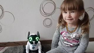 Robot Chip / Робот Чип