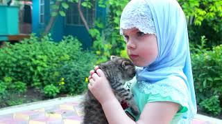 ИСЛАМ НА ЗАЩИТЕ ЖИВОТНЫХ ! ISLAM PROTECT ANIMALS