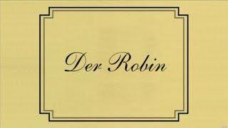 """""""Der Robin"""" - Die letzte Seite von Barney Stinson"""