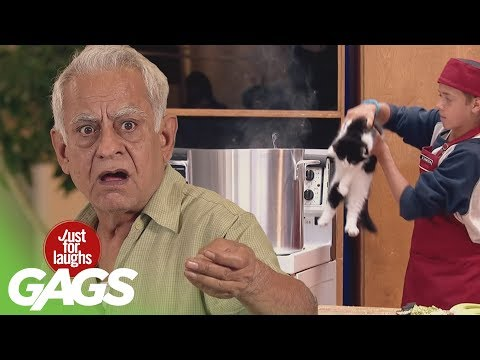 Best Cat Pranks - Best of Just for Laughs Gags